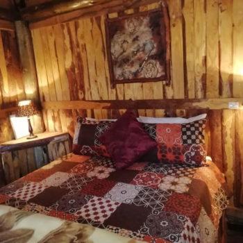 Thaba'Nkwe Lion Cabin