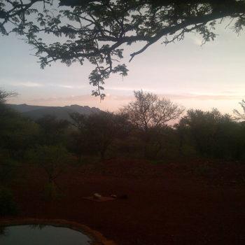 Thaba'Nkwe Bushveld Inn